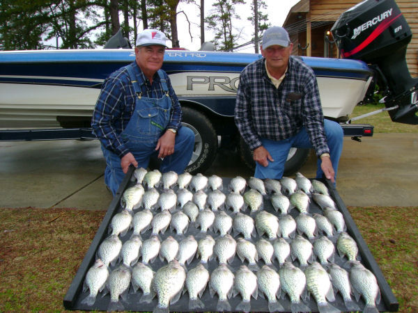 Weiss lake bass crappie fishing report date 07 28 08 for Crappie fishing in alabama