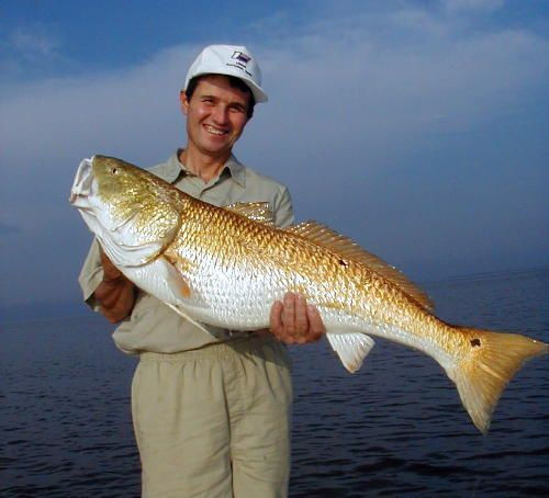 Find fishing guides charters for Mississippi out of state fishing license