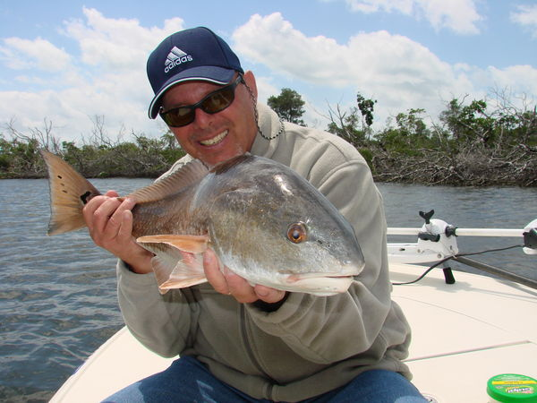 Ten Thousand Islands Everglades City also Fly Fishing In Everglades Along together with Fast Flyfishing Action 16887 together with My Old Custom Kayak furthermore 431188. on mayan cichlid fish everglades
