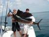 2409Galestonsailfish.jpg