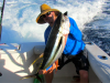 conley yellowfin 2.png