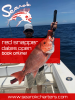 ponce_inlet_offshore_fishing_charters__1_.png