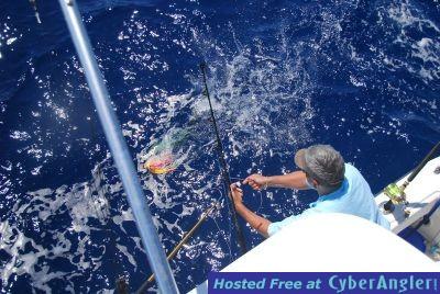Chub Cay - May 2009
