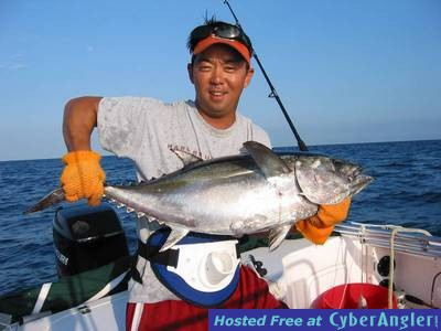 tuna anyone?