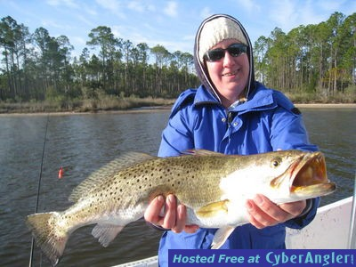 Gator Trout, Huge for the Panhandle...