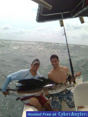 Sail Fish caught out of Haulover Miami