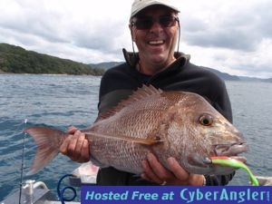 Snapper caught soft plastic fishing in New Zealand