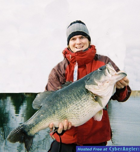 Delaware Tackle Swimbait Bass
