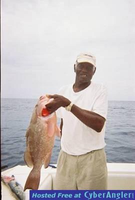 Blue Marlin Bill