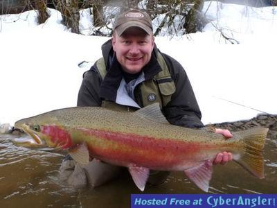 http://www.noelgyger.ca  Winter Steelhead