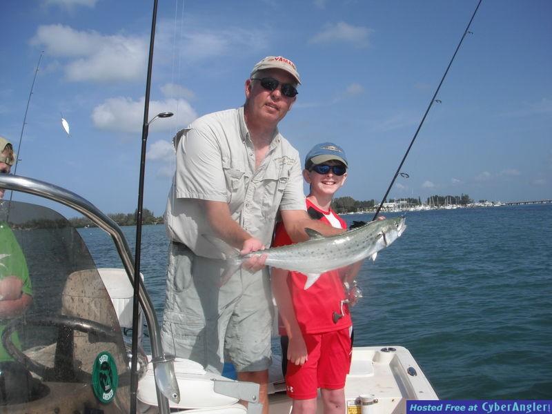 Sarasota mackerel