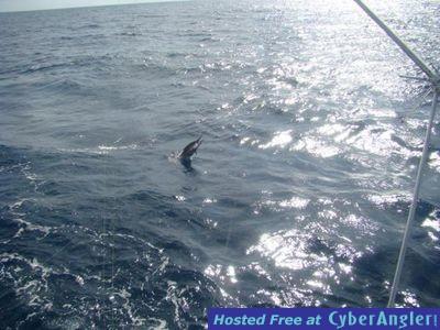 Aboard Hooked Up Sportfishing