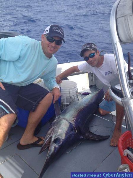 Fall Swordfish off Miami