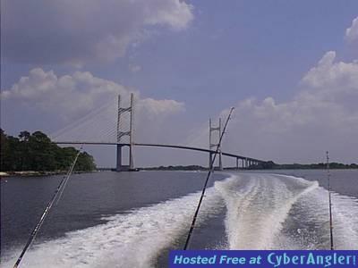 Dames Point Bridge - JAX, FL