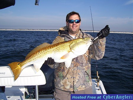 redfish1201