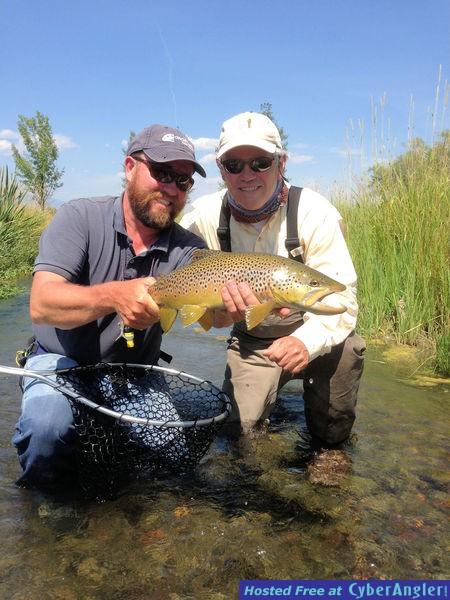Bob Reynolds Ruby River brown trout