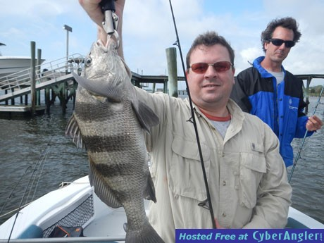 Tasty Black Drum