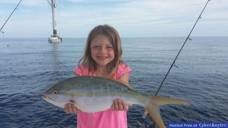 Yellowtail Snapper caught with Sea Gone Fishing