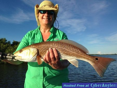 Redfish and Snapper