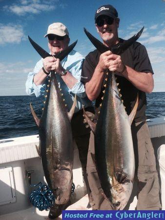 Yellowfin Tuna Venice, La