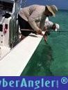 Fishing with Capt. Tom Chaya