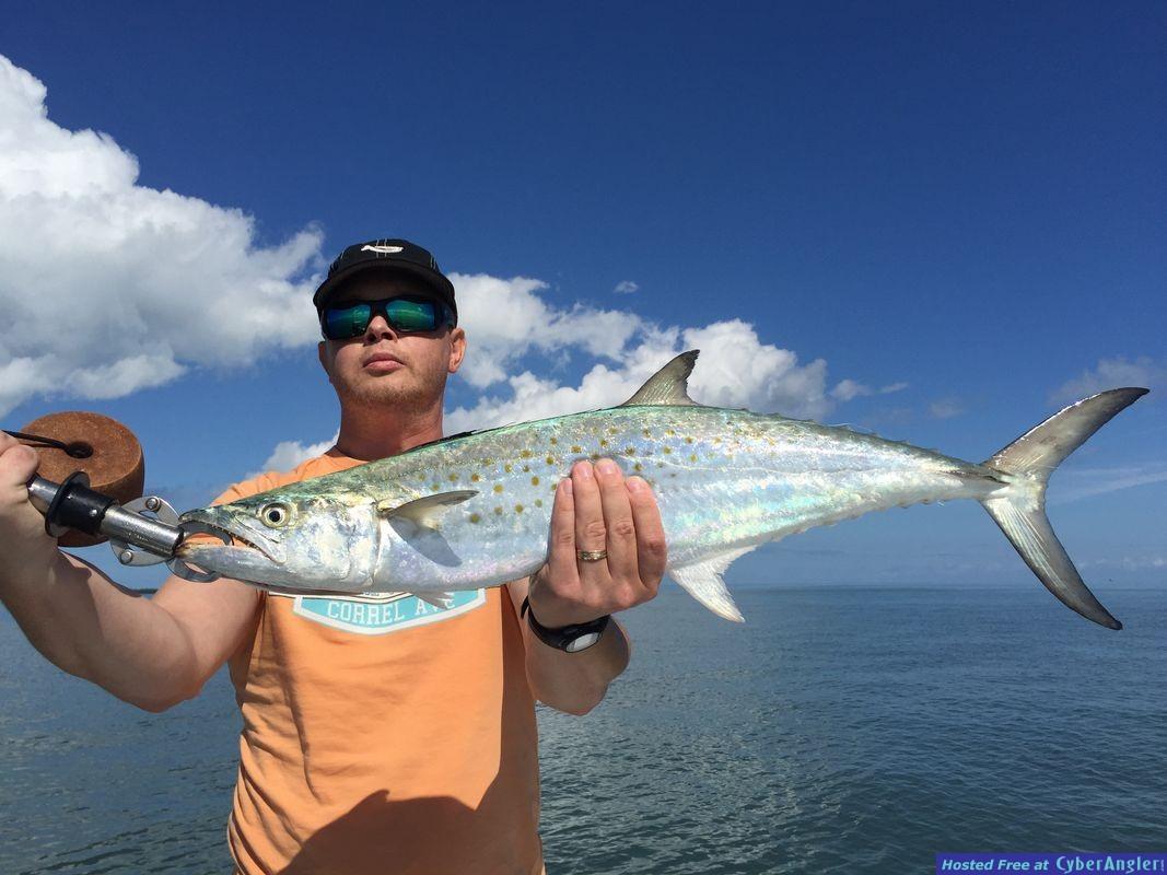 Fishing Tampa Bay, FL