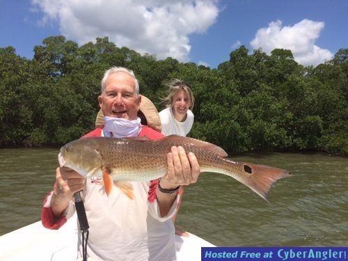 Looking on Redfish