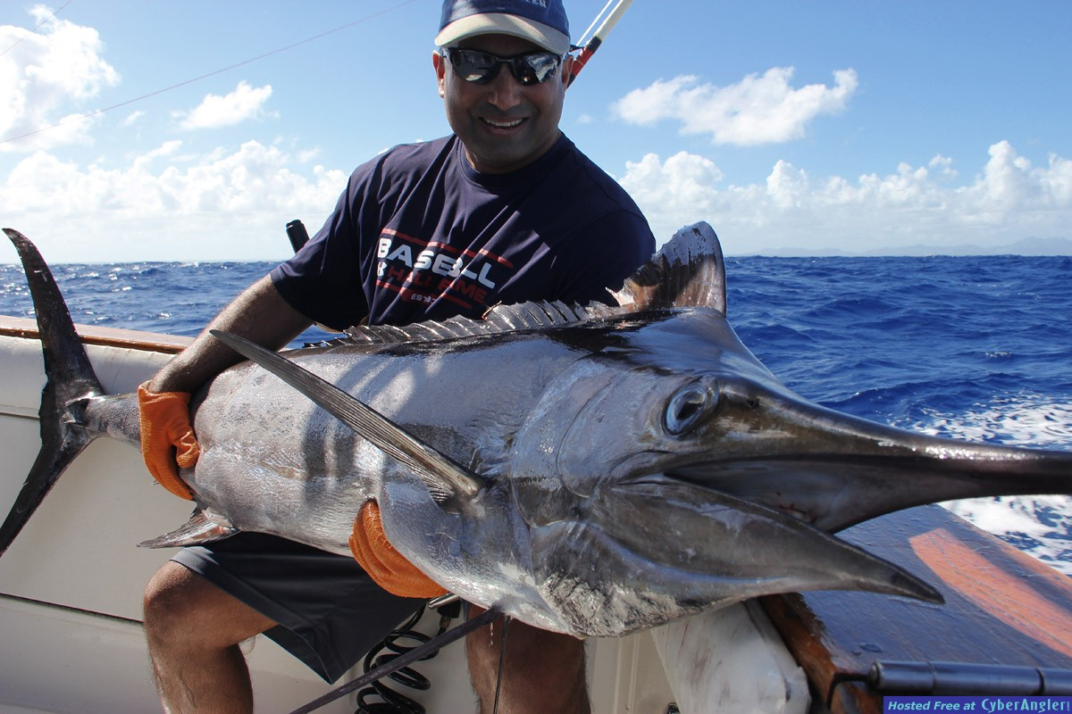 Blue Marlin in Punta Cana with Mr. Ali