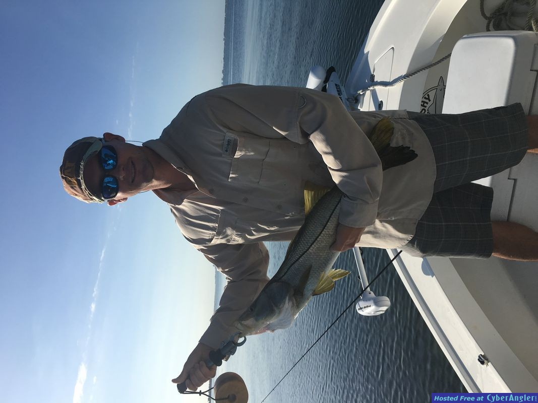 snook trout reds