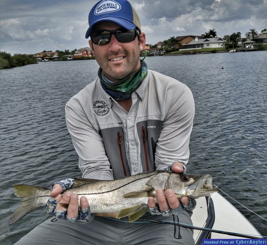 fly snook