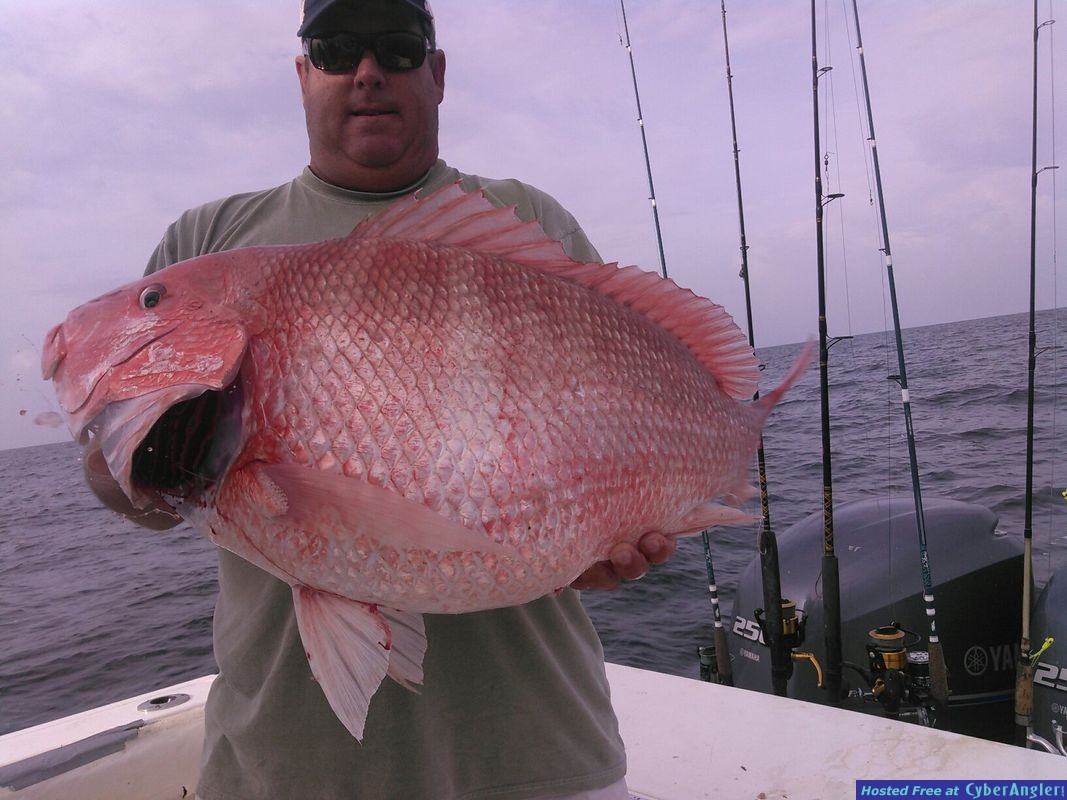 red snapper whipasnapa charters biloxi ms
