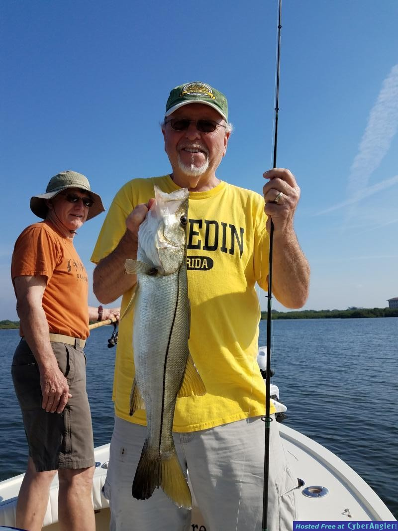 Snook_fishing_trip_guided_charters_in_Safety_harbor_florida
