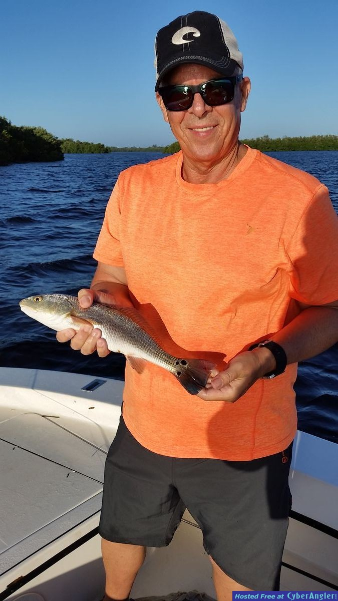 Redfish mytarpon.com flats fishing guide