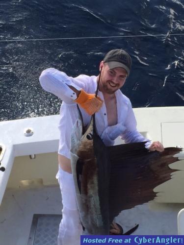 sailfish2