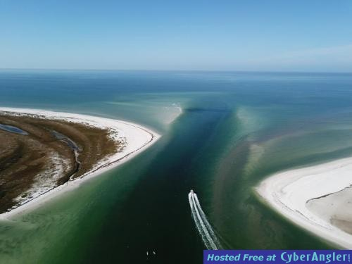 clearwater_fishing_charters