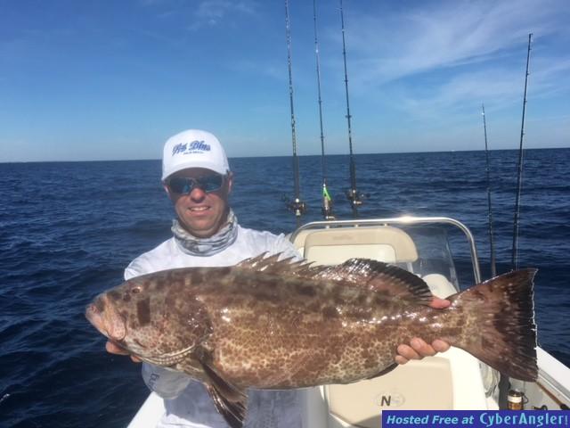 Luke_grouper