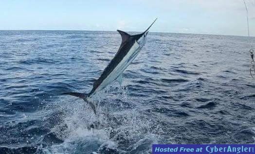 Fishing Costa Rica