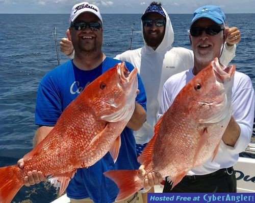 IMG_8058_Red_snapper1