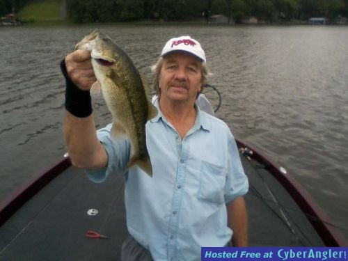 Fish Shallow or Deep  for bass in August