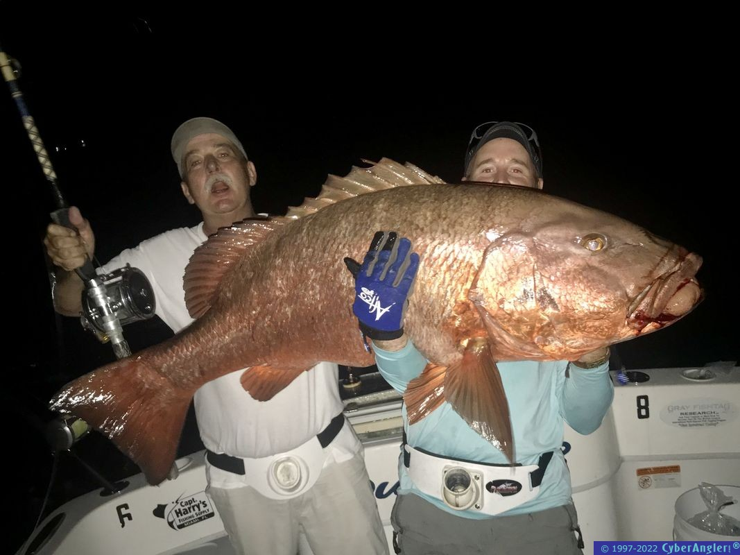 IMG_8826-100-pound-Cubera-snapper