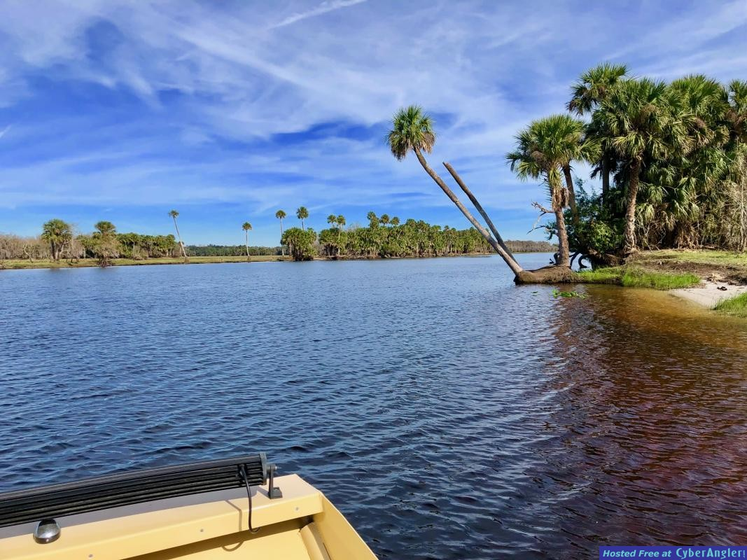 st_johns_river_fishing_charters_central_florida_airboat__1_