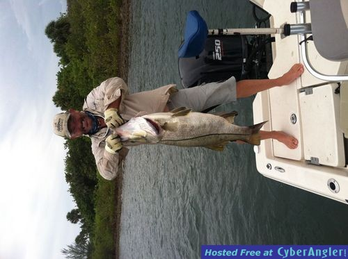 Monster Snook