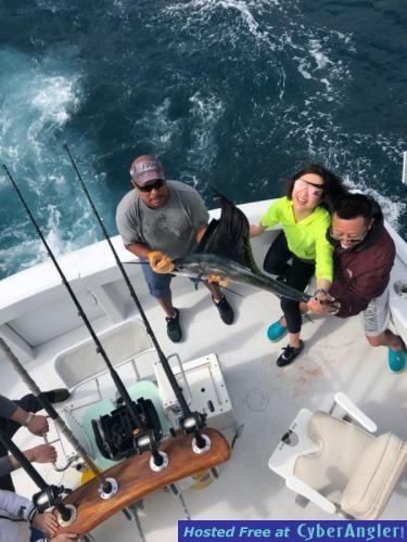 sailfish_nancy