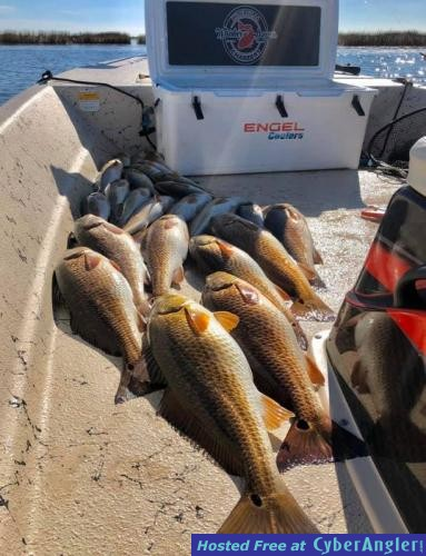 Whiskey_Bayou_Charters___Fishing_Report___Searching_for_Delacroix_Redfish__