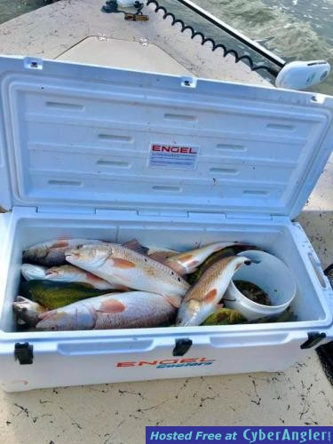 Whiskey_Bayou_Charters___Fishing_Report___Saturday_Redfishing_in_the_Delacr