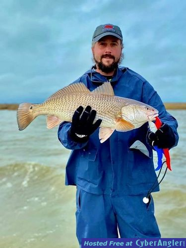 redfish-at-every-stop3